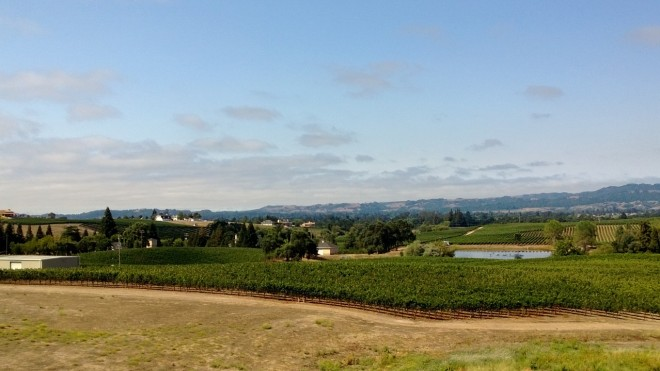 View of Napa Valley from William Hill